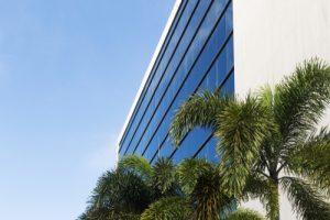 commercial real estate with palm tree